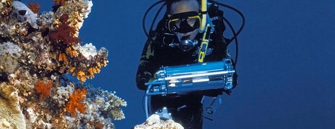 DivingPAM